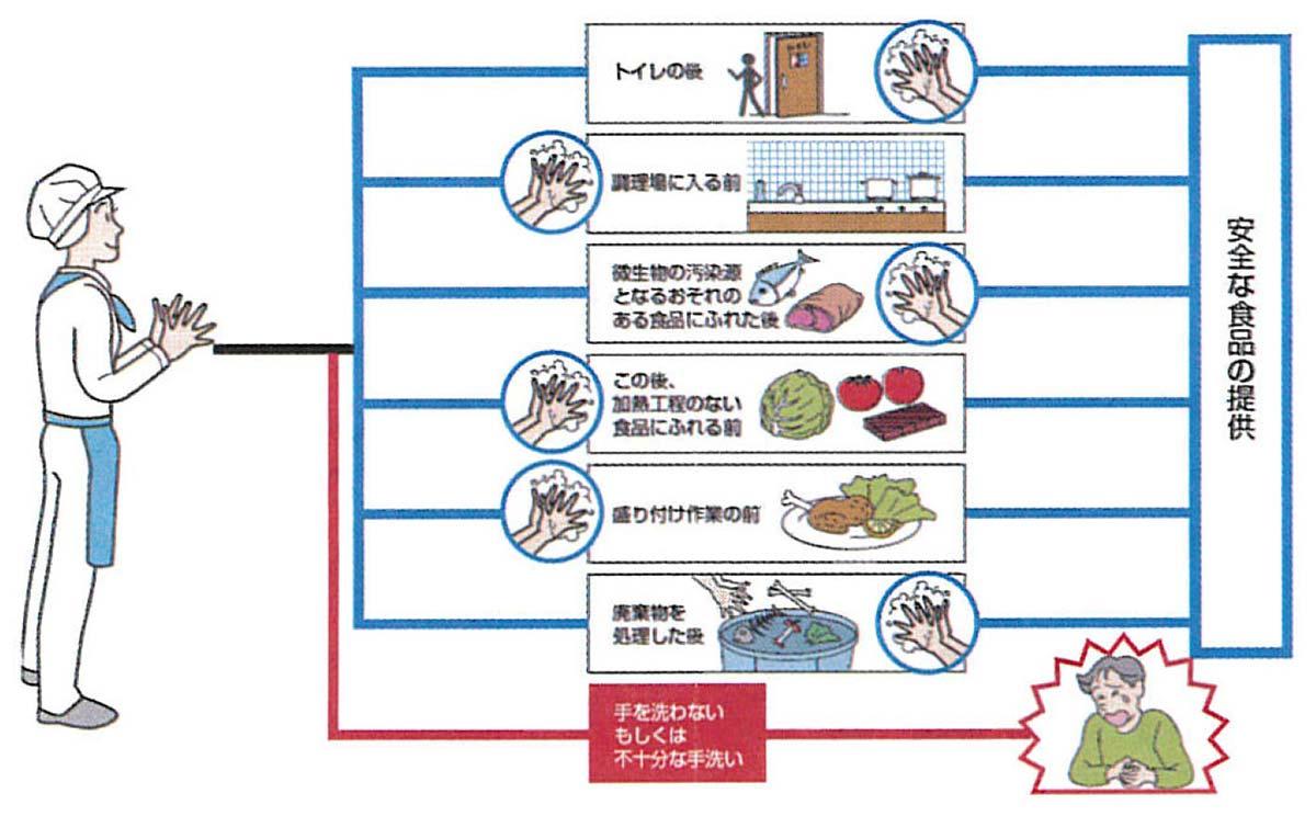 安全な食品の提供